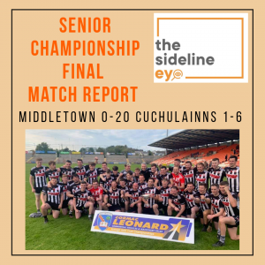 Senior Hurling Championship Final Match Report