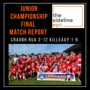 Junior Hurling Championship Final Match Report