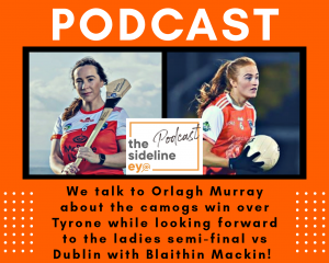 Camogs reach All-Ireland Final while Ladies hope to do the same!