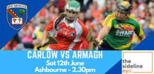 Camogs take on Carlow in semi-final showdown